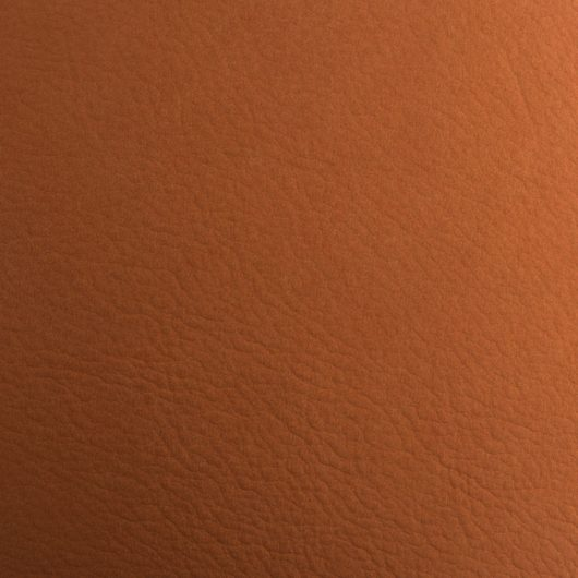 leather 003