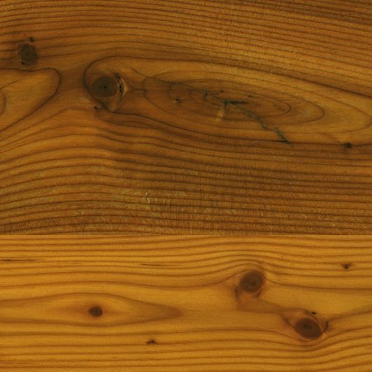 wood 019v2