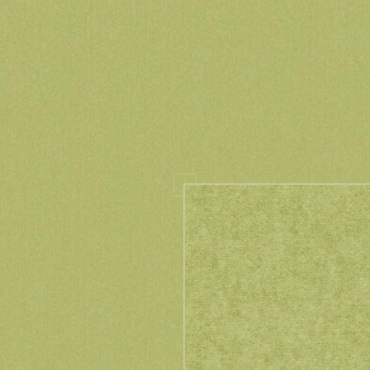 Diffuse (kiwi)