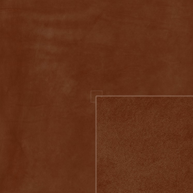 Diffuse (chestnut)
