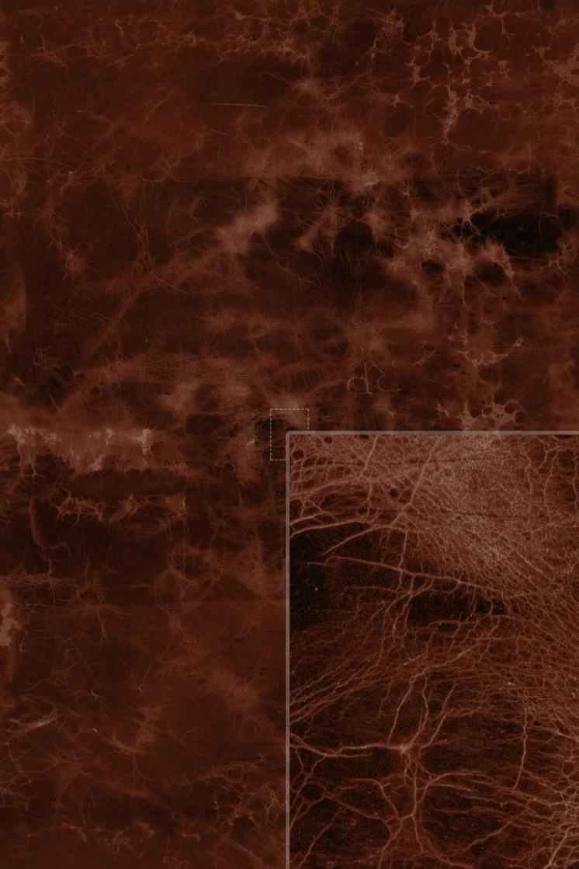 Diffuse (redwood)