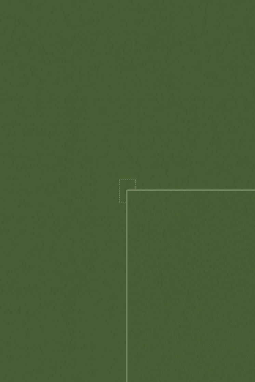 Diffuse (fern)