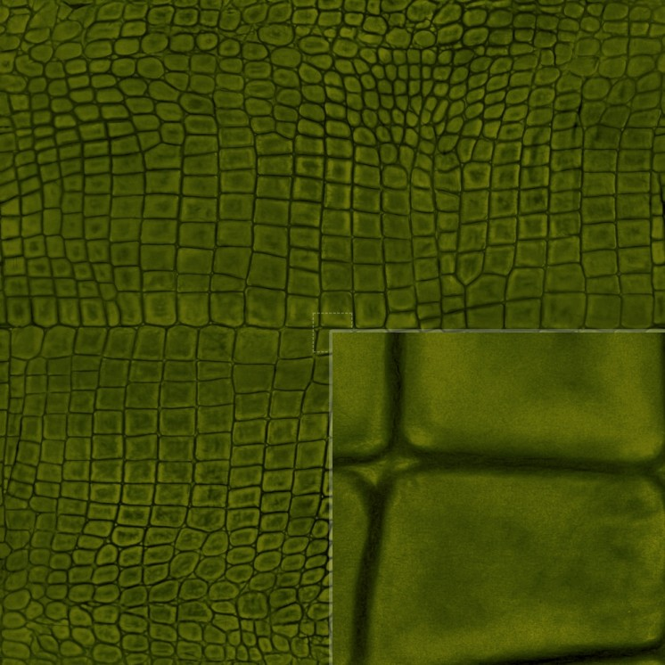 Diffuse (dark green)