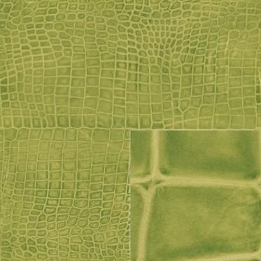 Diffuse (turtle green)