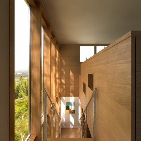 Wood #3, Demo